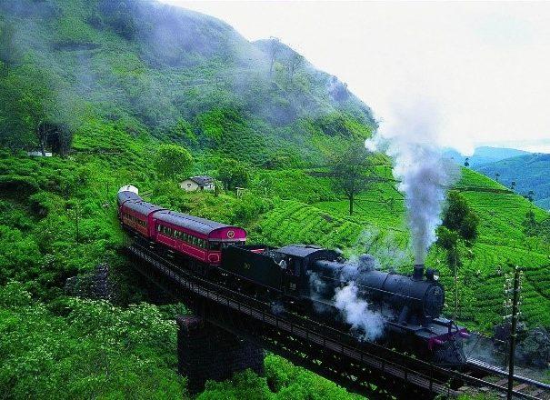 ヌワラエリヤの高原列車
