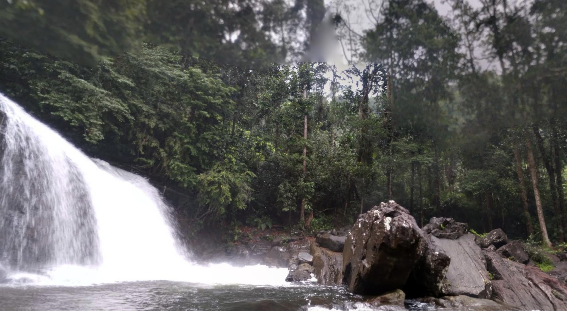 シンハラージャ森林保護区